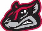 ASCE Richmond Flying Squirrels Outing